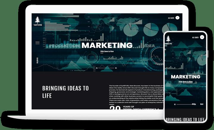 Philippine Website Solutions Marketing